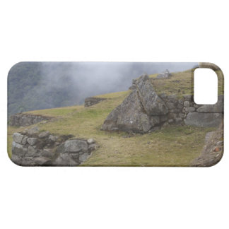 Llama (Lama glama) amongst the Inca terraces at Barely There iPhone 5 Case