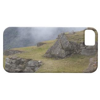 Llama (Lama glama) amongst the Inca terraces at Case For The iPhone 5