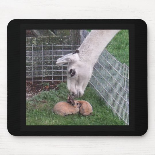 Llama Llove and Bunny Mouse Mat