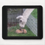 Llama Llove and Bunny Mousepads