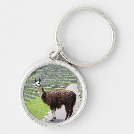 llama looking keychains