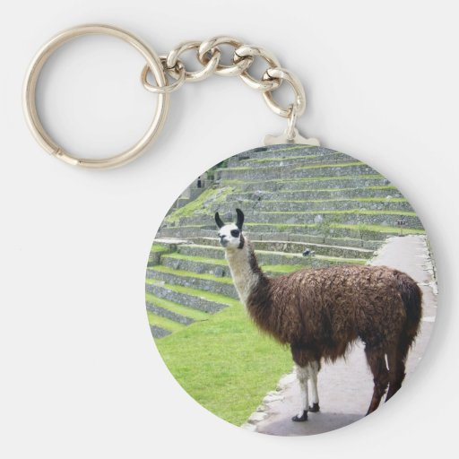 llama looks key chains