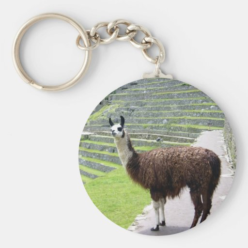 llama looks keychain