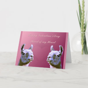 Llama Love Valentine Cards Zazzle Uk