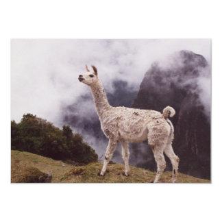 Llama Machu Picchu, Peru 11 Cm X 16 Cm Invitation Card