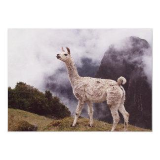 Llama Machu Picchu, Peru 13 Cm X 18 Cm Invitation Card
