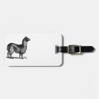 Llama Sketch Design Luggage Tag