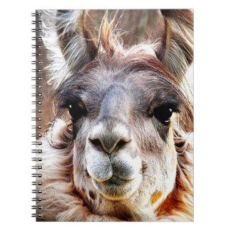 Llama Spiral Notebooks