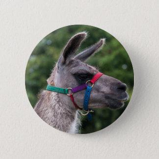 Llama Superiority 6 Cm Round Badge