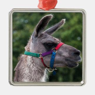 Llama Superiority Christmas Ornament
