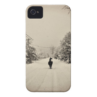 llama winter iPhone 4 Case-Mate case