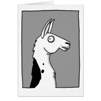 LlamaLlama Card