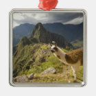 LLamas and an over look of Machu Picchu, Christmas Ornament
