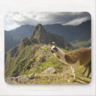 LLamas and an over look of Machu Picchu, Mouse Mat