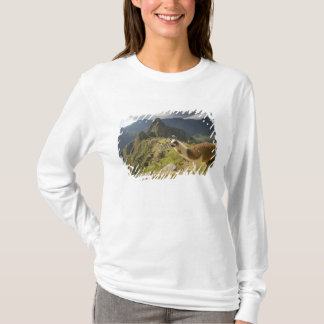 LLamas and an over look of Machu Picchu, T-Shirt