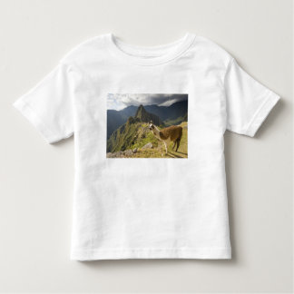 LLamas and an over look of Machu Picchu, Toddler T-Shirt