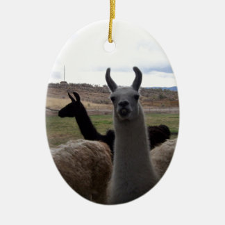 Llamas Christmas Ornament