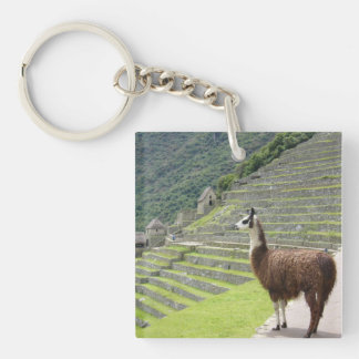 llamas square acrylic keychain