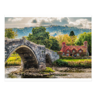Llanwrst Tea Rooms Postcard