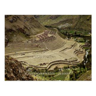 Llaqtapata Ruins Peru on the Inca Trail Postcard