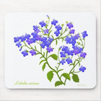 Lobelia Garden Flowers Mousepad