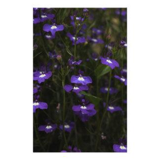 Lobelia, Purple Flowers with Dark Background. 14 Cm X 21.5 Cm Flyer