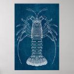 Lobster Blueprint Poster