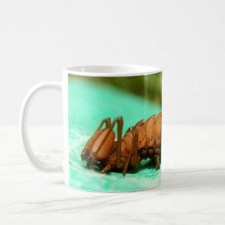 Lobster Moth Caterpillar Bug Mug