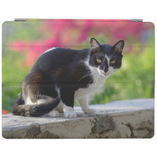 Local cat at The Gunner's Tavern iPad Cover