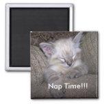 locker magnet ...Nap time