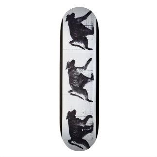 LOCO MOTION Skateboard: Baboon Walking 21.6 Cm Skateboard Deck
