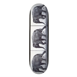 LOCO MOTION Skateboard: Elephant Walking Custom Skate Board
