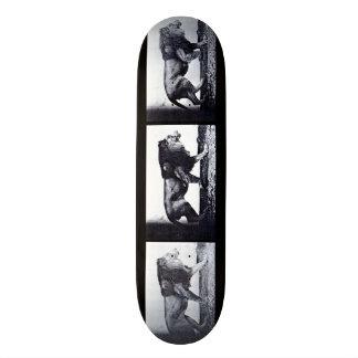 LOCO MOTION  Skateboard: Lion Walking Skate Board Decks