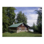 Log Cabin in the Pines Postcard