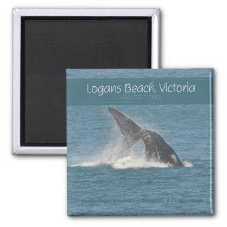 Logans Beach Victoria Australia Whale Watch Magnet
