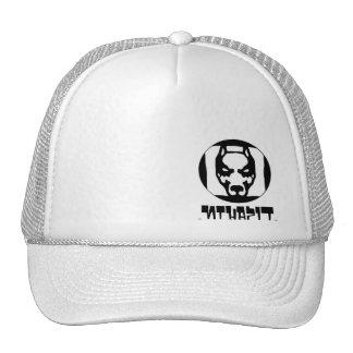 logo full, .NthapiT. Trucker Hats