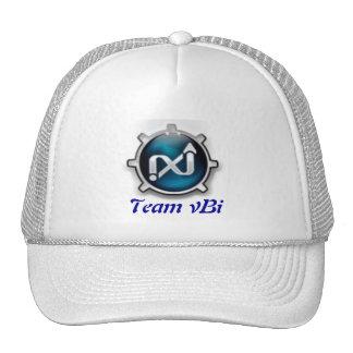 Logo, Team vBi Cap