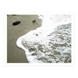 Loiza, Puerto Rico Beach Postcard