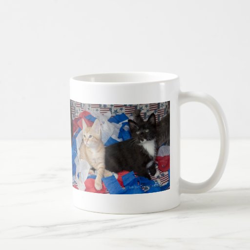 Loki & His Brother in Red, White, & Blue Coffee Mugs