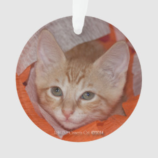 Loki in Orange & White Ornament