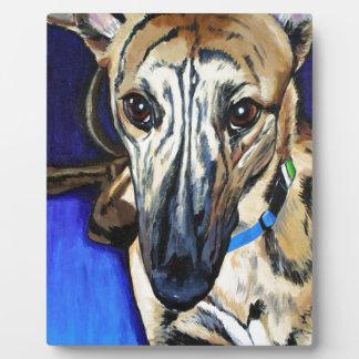Loki - Lurcher dog Photo Plaque