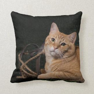 Loki with sled cushion