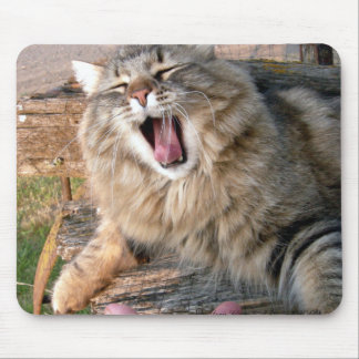 LOL Maine Coon Mouse Mat