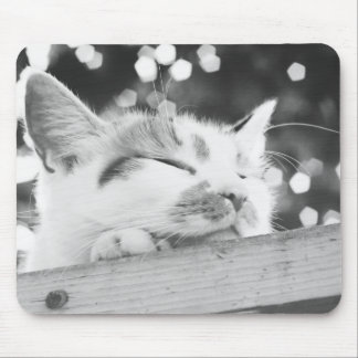 Lola 2 mouse pads