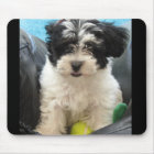 Lola A Rescued Havanese puppy Mouse Mat