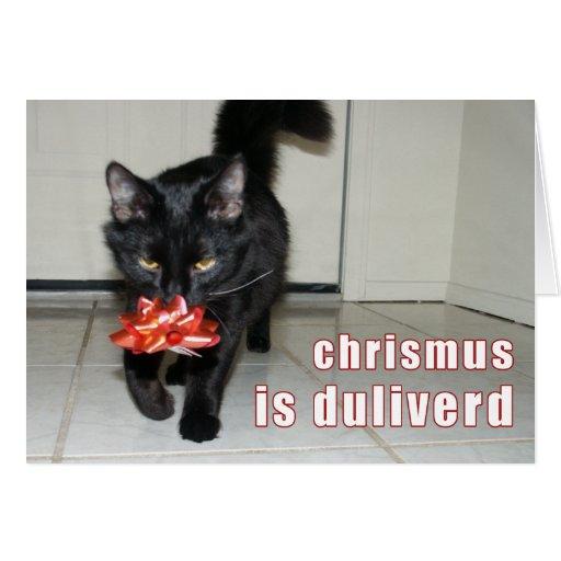 lolcat Christmas Card