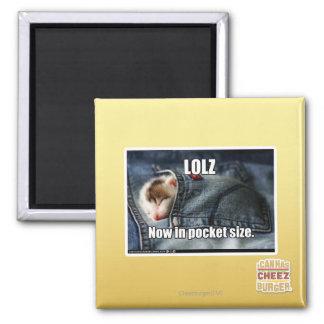 LOLZ Now in Pocket Size Magnet