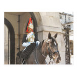 London,  Mounted sentry in Whitehall Postcard