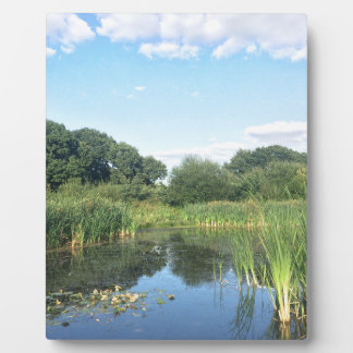 London - UK Pond Display Plaques