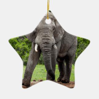 Lone African elephant bull. Christmas Ornament